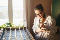 Vrouwen gediplomeerde student dichtbij germinatielijst Sciencist die belangrijke gegevens schrijven aan notitieboekje of logboek stock foto's