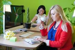 Vrouwen het bedrijfsbureau drinken koffiepauze Stock Afbeeldingen