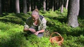 Vrouwen het Kaukasische zitting het plukken bosgras van de bosbessenmand stock footage