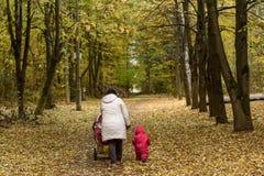 Vrouwen lopende peuter in de herfstweg Royalty-vrije Stock Foto's