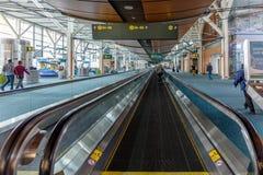 Vrouwen met bagage in luchthaven royalty-vrije stock fotografie