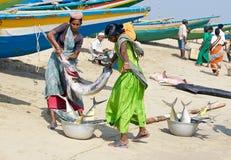 Vrouwen met vissen bij de vissenmarkt stock foto