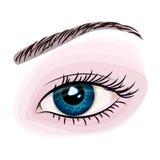 Vrouwen mooi blauw oog Stock Foto