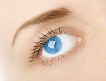 Vrouwen` s blauw oog in studio Royalty-vrije Stock Fotografie