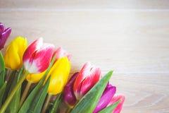 Vrouwen ` s dag 8 maart-achtergrond met de lentebloemen Royalty-vrije Stock Foto