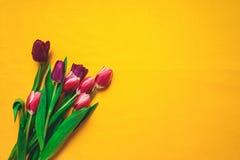 Vrouwen ` s dag 8 maart-achtergrond met de lentebloemen Stock Afbeeldingen