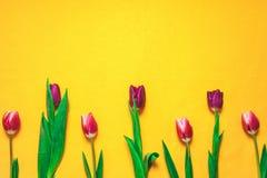 Vrouwen ` s dag 8 maart-achtergrond met de lentebloemen Royalty-vrije Stock Afbeelding