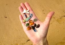 Vrouwen` s hand en multicolored zeeschelpen royalty-vrije stock fotografie