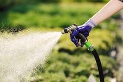 Vrouwen` s hand met tuinslang het water geven installaties, het tuinieren concept royalty-vrije stock afbeelding