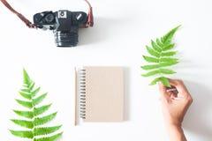 Vrouwen` s hand met varenblad, camera, notitieboekje en potlood, vlak l Royalty-vrije Stock Foto's