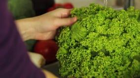 Vrouwen` s handen die een groene salade in gootsteen in keuken wassen Gezond het Eten Concept stock video