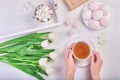 Vrouwen` s handen die kop thee houden royalty-vrije stock foto