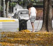 Vrouwen schoonmakende de herfst gevallen bladeren, selectieve kleur stock afbeelding