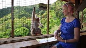 Vrouwen voedende aap stock video