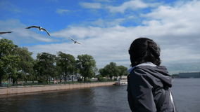 Vrouwen voedende zeemeeuwen op de pijler stock footage