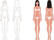 Vrouwencijfer vector illustratie