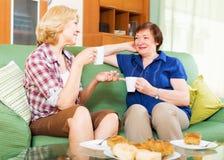 Vrouwencollega's die thee drinken en tijdens pauze voor lunch spreken stock foto