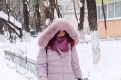 Vrouwengangen in de winter Royalty-vrije Stock Afbeelding