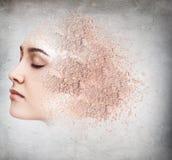 Vrouwengezicht van kruimelig poeder wordt gemaakt dat royalty-vrije stock afbeelding