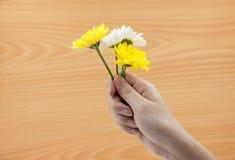 Vrouwenhand die een bos van bloemen op houten achtergrond houden Stock Foto's