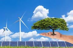 Vrouwenhand die groene boom met photovoltaicszonnepanelen en windturbines houden op blauwe hemel Stock Afbeeldingen