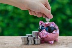 Vrouwenhand die muntstuk in glanzend roze spaarvarken met stapel zetten van stock foto's