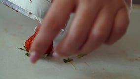 Vrouwenhand die verse die aardbeien snijden met een mes worden gesneden stock videobeelden