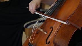Vrouwenhand het Spelen cello met Celloboog Sluit omhoog van vrouwelijke hand het spelen cello met celloboog Klassiek orkest stock videobeelden