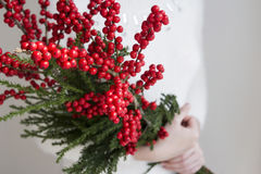 Vrouwenhanden die ilex verticillata houden of winterberry Stock Fotografie