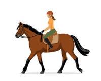 Vrouwenhorseback het berijden Ruiter sport Geïsoleerde vector illustratie