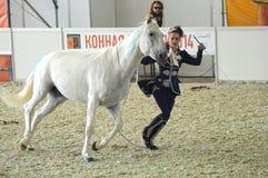 Vrouwenjockey in een donkerblauwe kleding dichtbij een wit paard Tijdens de show Internationale Ruitertentoonstelling Moskou die  Stock Foto