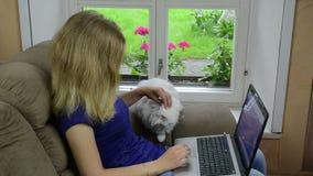 Vrouwenlaptop kattenleunstoel stock footage