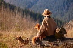 Vrouwenreiziger die met haar honden van zonsondergang op piek van berg genieten royalty-vrije stock foto's
