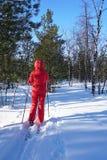 Vrouwenskiër die op een duidelijke ijzige dag ski?en Royalty-vrije Stock Fotografie