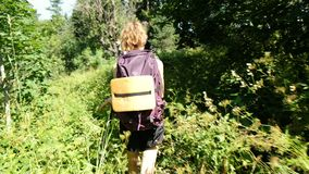 Vrouwentoerist met een rugzak die op een gebied van wildflowers in een nationaal park in het bos in de zomer lopen Meisje stock videobeelden