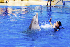 Vrouwentrainer die met dolfijnen zwemmen Royalty-vrije Stock Fotografie