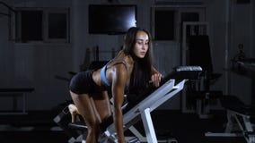 Vrouwentreinen in de gymnastiek Atletische vrouwentreinen met domoren, die zijn bicepsen pompen stock video