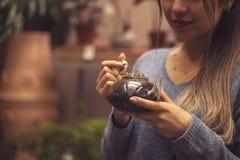 Vrouwentuinman die cactusinstallatie in een pot in serre planten Vrouwelijke werknemer die bij een cactustuin werken royalty-vrije stock foto
