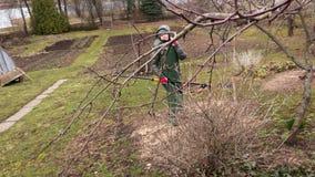 Vrouwentuinman met taksnijder dichtbij appelboom stock videobeelden