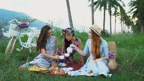 Vrouwenvrienden die in kleding van picknick genieten, die thee gieten, die pret hebben, die aan elkaar spreken stock video