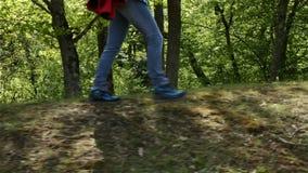 Vrouwenwandelaar die op bosrand met een rugzak lopen stock videobeelden