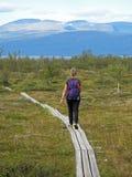 Vrouwenwandelaar op de Kungsleden-sleep, het Nationale Park van Abisko, Zweden, Europa royalty-vrije stock foto's