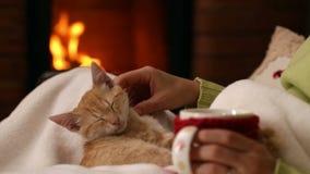 Vrouwenzitting bij de open haard met een kop van koffie en haar katje stock videobeelden