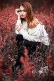 Vrouwenzitting in de rode struiken royalty-vrije stock afbeeldingen