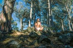 Vrouwenzitting in een bos met bomen op de achtergrond royalty-vrije stock afbeelding