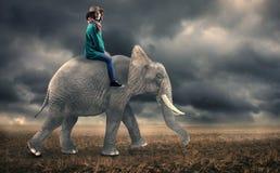 Vrouwenzitting op een olifant royalty-vrije stock fotografie