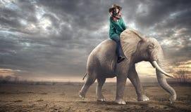 Vrouwenzitting op een olifant royalty-vrije stock foto's