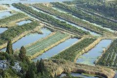Vruchtbare gebieden in de delta van Neretva-Rivier in Kroatië Stock Afbeelding