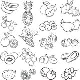 Vruchten royalty-vrije illustratie