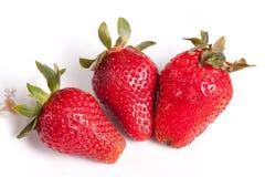 vruchten - Aardbeien Royalty-vrije Stock Afbeeldingen